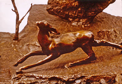 He Who Saved The Deer - Deer Detail Print by Dawn Senior-Trask