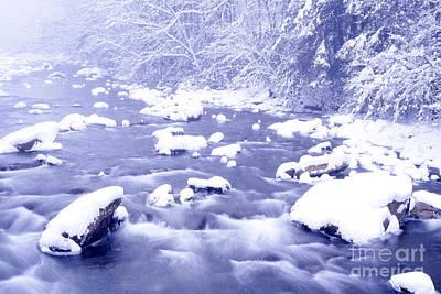 Heavy Snow Cranberry River Print by Thomas R Fletcher