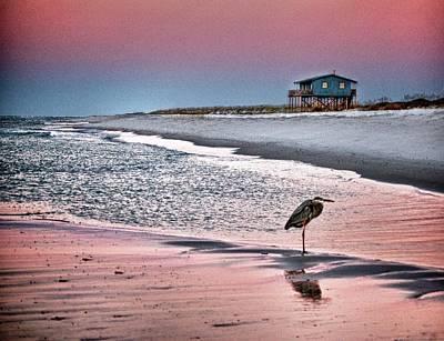 Heron And Beach House Print by Michael Thomas