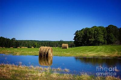 Haybales Digital Art - High And Dry On The North Forty by The Stone Age