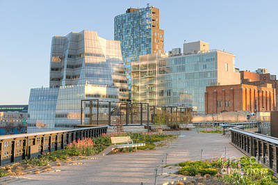 New York City Photograph - High Line Park I by Clarence Holmes