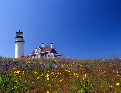 Highland Lighthouse Cape Cod Print by Skip Willits
