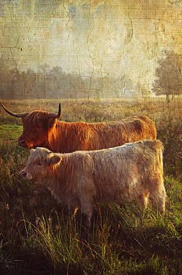 Highlanders. Scottish Countryside Print by Jenny Rainbow