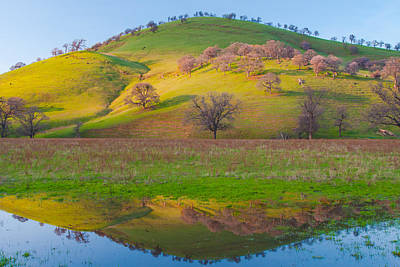 Hill Reflection In Pond Print by Marc Crumpler