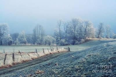 Hoar Frost Print by Jutta Maria Pusl