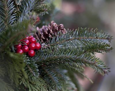 Photograph - Holiday Season by Ivelina G
