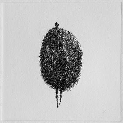 Honey Print by Valdas Misevicius
