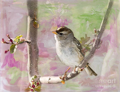Sparrow Digital Art - House Sparrow by Betty LaRue