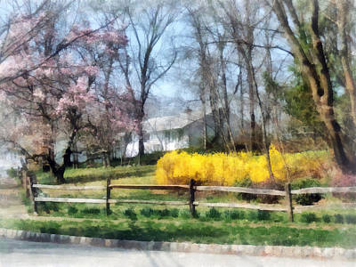 Suburban Photograph - House With Magnolias And Forsythia by Susan Savad