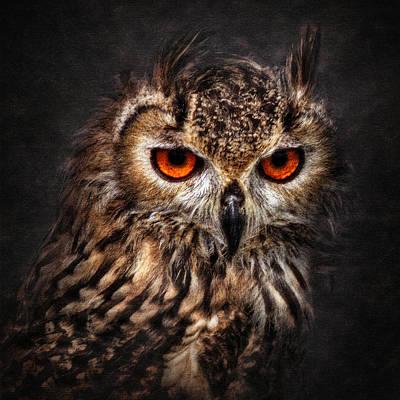 Iandavidsoar Pyrography - Hunting Eyes by Ian David Soar