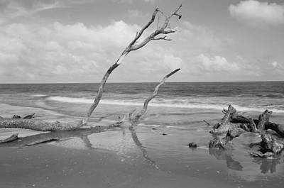 Hunting Island State Park Print by Donnie Smith