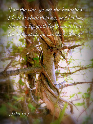 Inspirational Photograph - I Am The Vine John 15 by Cindy Wright