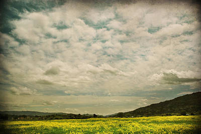 Pleasanton Photograph - I Just Sat There Watching The Clouds by Laurie Search