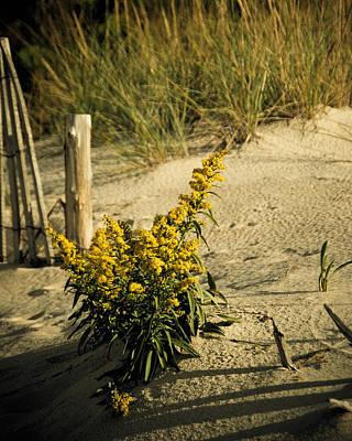 Beach Photograph - I Saw God Today by Trish Tritz