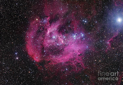 Ic 2944, The Running Chicken Nebula Print by Robert Gendler