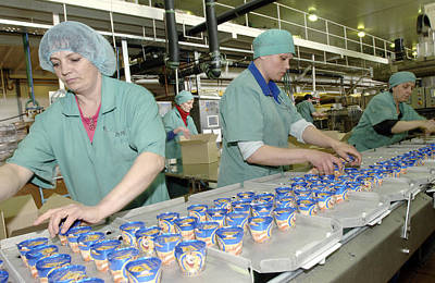 Ice Cream Production Line Print by Ria Novosti
