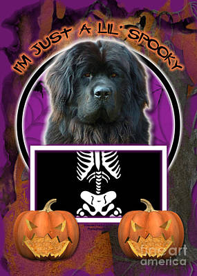 Newfie Digital Art - I'm Just A Lil' Spooky Newfoundland by Renae Laughner