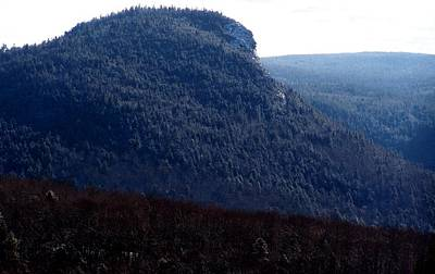 Photograph - Imp Mountain Profile I by Frank LaFerriere