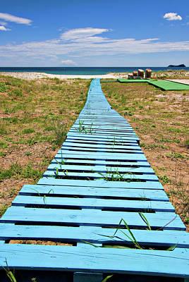 Pallet Photograph - Improvised Boardwalk by Meirion Matthias
