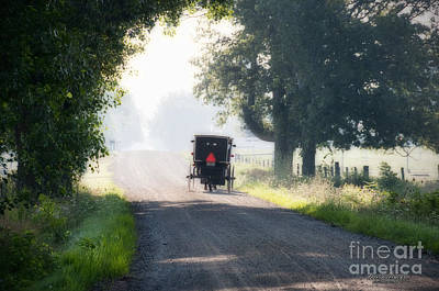 Amish Photograph - In The Heat Of The Day by David Arment