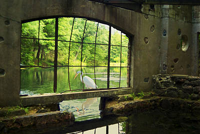 Stork Digital Art - In The Moment by Jack Zulli