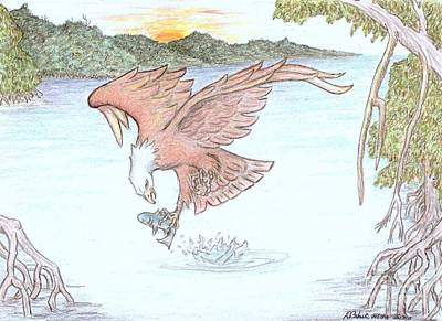 Osprey Drawing - Inflight Meal by Desley Brkic