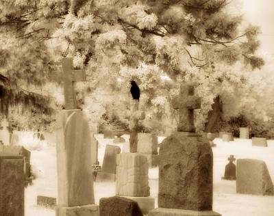 Infrared Crow Print by Gothicolors Donna Snyder