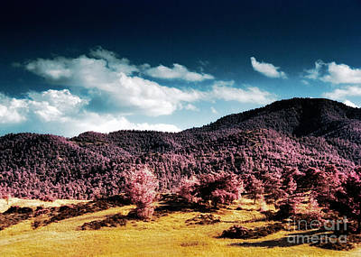 Cyprus Photograph - Infrared Troodos Mountains by Stelios Kleanthous