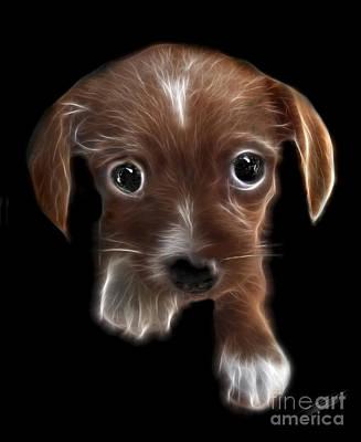Puppies Digital Art - Innocent Loving Eyes by Peter Piatt
