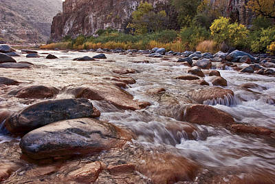 Leaves Photograph - Intimate Waters On The Salt River by Dave Dilli