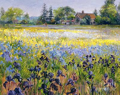 Irises And Two Fir Trees Print by Timothy Easton