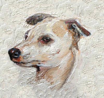 Italian Greyhound Print by Enzie Shahmiri