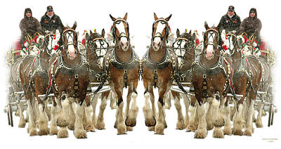 It's A Clydesdale Christmas Print by Jenny Gandert