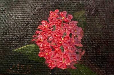 Painting - Ixora Bloom by Maria Soto Robbins