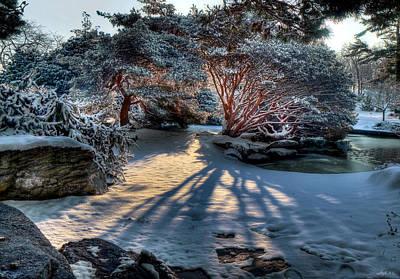 Photograph - Japanese Garden At Sunrise by Stephen EIS