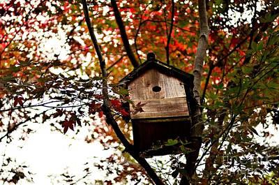 Japanese Garden In Autumn 5 Print by Dean Harte