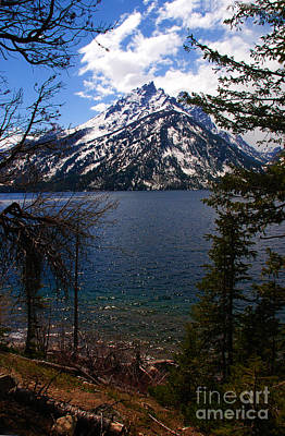Cascade Canyon Photograph - Jenny Lake In The Grand Teton Area by Susanne Van Hulst
