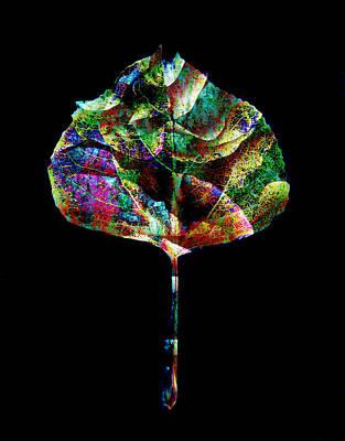 Jewel Tone Leaf Print by Ann Powell