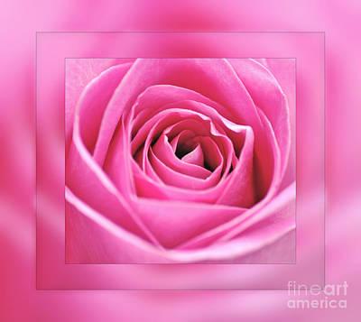 Just Pink Print by Kaye Menner