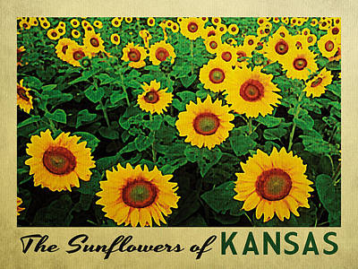 Sunflowers Digital Art - Kansas Sunflowers by Flo Karp