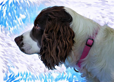 Dog Photograph - Kaya Paint Filter by Steve Harrington