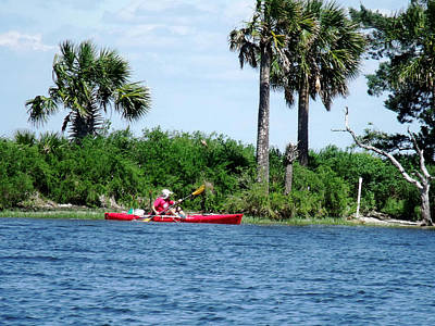 Kayaking Along The Gulf Coast Fl. Print by Marilyn Holkham