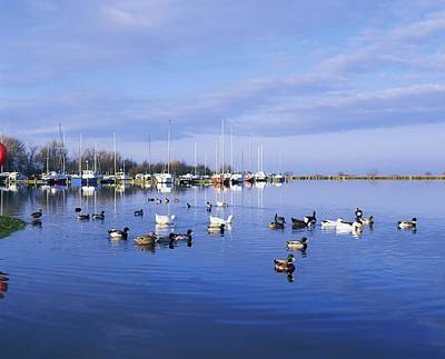 Kinnego Marina, Lough Neagh, Co Antrim Print by The Irish Image Collection