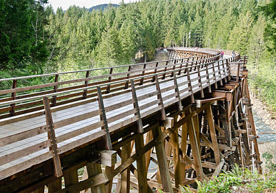 Wooden Photograph - Kinsol Trestle by Andy Smy