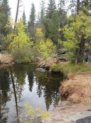 Sierra Nevada Photograph - Lake In Sierras by Naxart Studio
