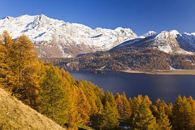Lake Sils In Autumn Print by Frank Lukasseck