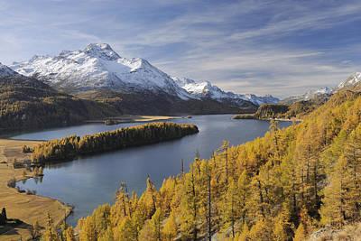 Lake Sils With Trees In Autumn, Piz Da La Margna, St Moritz, Maloja District, Engadin, Graubunden, Switzerland Print by Martin Ruegner