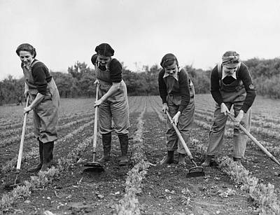 Photograph - Landgirls Hoeing by Maeers