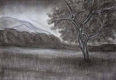 Landscape Drawing - Landscape Charcoal by Brittany Prichard