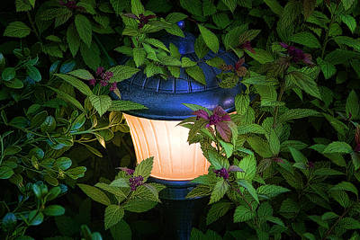 Night Lamp Photograph - Landscape Lighting by Tom Mc Nemar